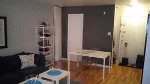 Sunny and spacious studio. Grand studio bien ensoleillée West Island Greater Montréal image 3