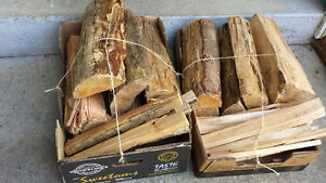 Bundle of Firewood in a box