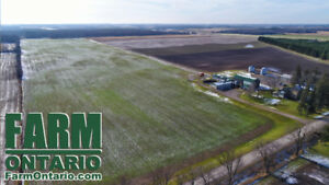 175 Acres with 155 Workable, Beautiful Home & 2000 Head Nursery