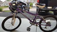 Nakamura 20 inch girls bike Moncton New Brunswick Preview