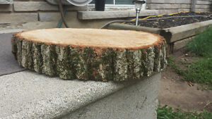 ONLY 3 LEFT Round, Raw, Oak Wood Slabs 14 inch round $40.00 each Kitchener / Waterloo Kitchener Area image 3