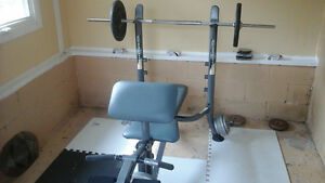 NAUTILUS WEIGHT BENCH..STEEL WEIGHTS