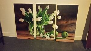 White Tulip Canvas Picture