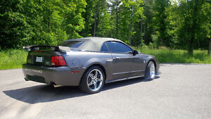2004 Ford Mustang GT STEEDA Q-400 Convertible