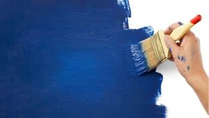 10% Painting Promo-   Two experienced painters