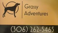 Dog Walking Services / Pet Sitting