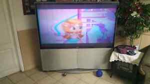 Free 65 inch Sony projector