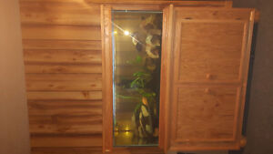 75 gallon Fish tank, stand and fish and all accessories