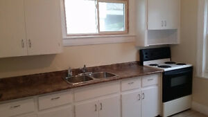 Newly Remodeled 2 Bedroom Mainfloor Home