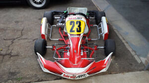 Birel | Kijiji in Ontario  - Buy, Sell & Save with Canada's
