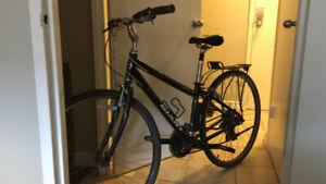 21 speed Giant bike