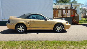 2000 Mustang convertible for sale!