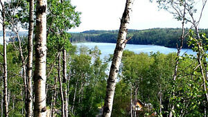 Shores on Cowan -  Huge $39,900 lake lots!