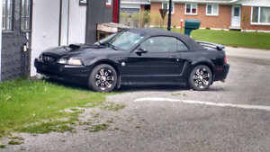 Ford  mustang 40 iemes  2004 convertible