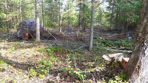 Land for sale--will owner finance as low as 300 a month Gatineau Ottawa / Gatineau Area image 4