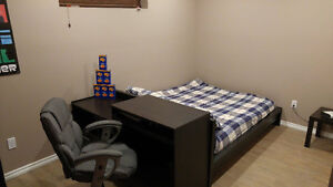 University Area 1 Bedroom Basement Suite
