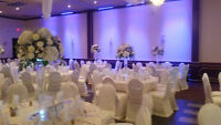 Wedding&Party Decorations Pakages Starting@$699