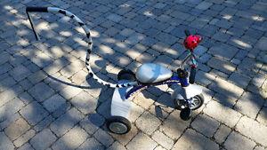 Tricycle pour enfants Louis Garneau avec poignée de contrôle