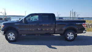 2011 Ford F-150 crew cab 5.0L v8 low kms