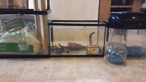 3 Aquariums