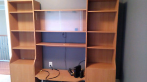 Bookshelf with Small Tv Cabinet