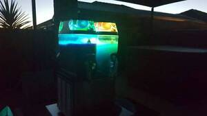 Slushy or disco slushy hire for Australia day going fast be quick Wangara Wanneroo Area Preview