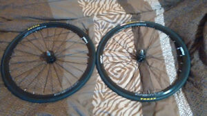 Aventon fixed gear wheel set