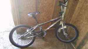 Grey and Purple BMX Bike