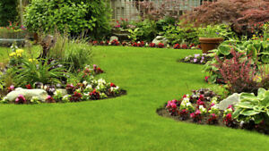 FOR SALE...Landscaping & Property Maintenance Business ACT NOW!!