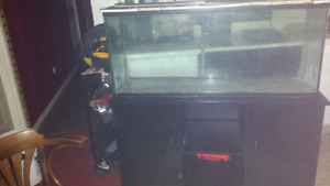 55 gallon tank and stand  OBO