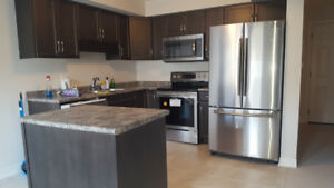 Brand New Town House For Rent Niagara Falls