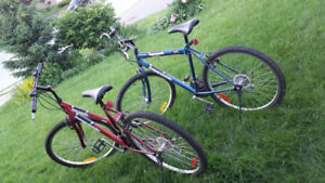 SuperCycle Adult Bikes ♥ 1 Blue + 1 Red
