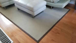 Area Rug 6 ft by 8ft.