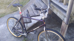 North Star ,La Luna,24 Speed ,BMX