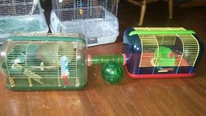 Hamster cage London Ontario image 1