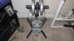 Weight Rack for Olympic Plates