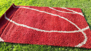 Rugs for sale $50.00 each