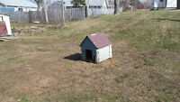 Looking for a large dog house for free or reasonable price...doe