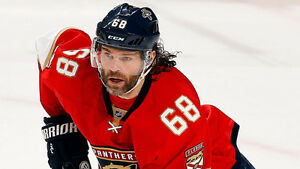 Florida Panthers VS Ottawa Senators tickets 4 for $99 Best Price Belleville Belleville Area image 1