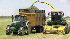 Silage and grain dump trailer.
