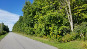 Imagine the possibilities with this country lot on 2.3 Acres