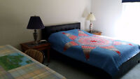 Sunny Blue Room, Prince Edward County, Monthly/Weekly/Daily