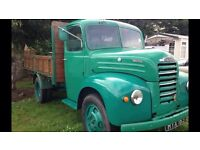 Ford Thames truck 1956