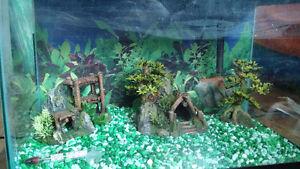 Fish Tank Aquarium $140 (OBO)