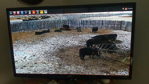 Cattle Camera System - INSTALLATION INCLUDED - 10X Zoom PTZ Cam