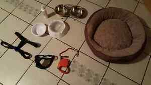 Puppy bed, harness, leash, food, feeders, spray, etc...