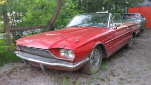 1966 Convertible Thunderbird