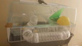 Hamster home freebies