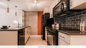 Downtown best location Mayfair south condo for rent