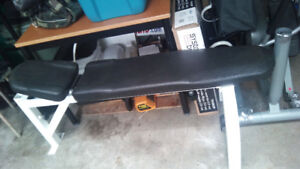 Northern Lights Professional Olympic Bench Press - Must Sell